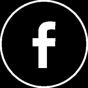 1_picto-facebook copy